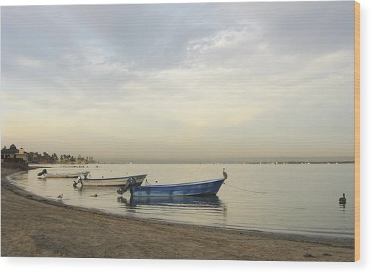 La Paz Waterfront Wood Print