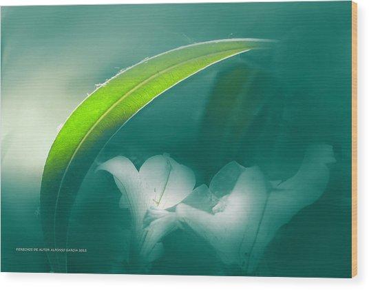 La Sombrilla Wood Print