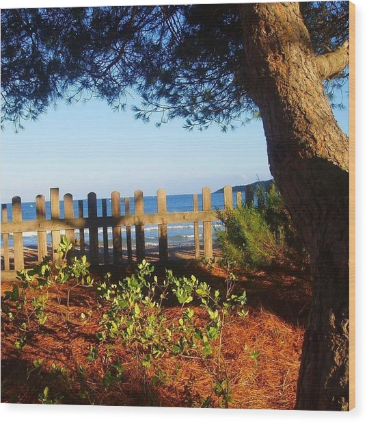 La Valla Del Mar Wood Print by Eire Cela