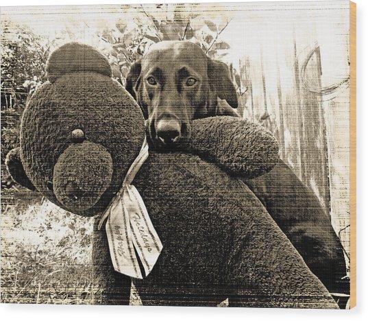 Labrador And Holiday Teddy Wood Print