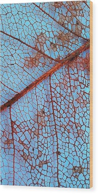 Lace Leaf 2 Wood Print