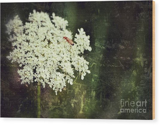Lacy Anne Wood Print