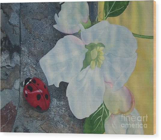 Lady Blossom Wood Print by Jennifer Taylor Rogerson