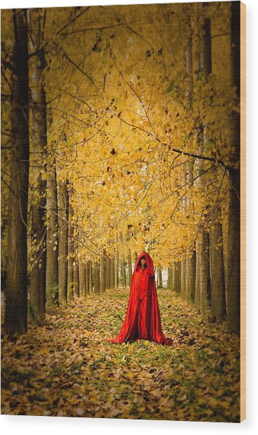 Lady In Red - 5 Wood Print