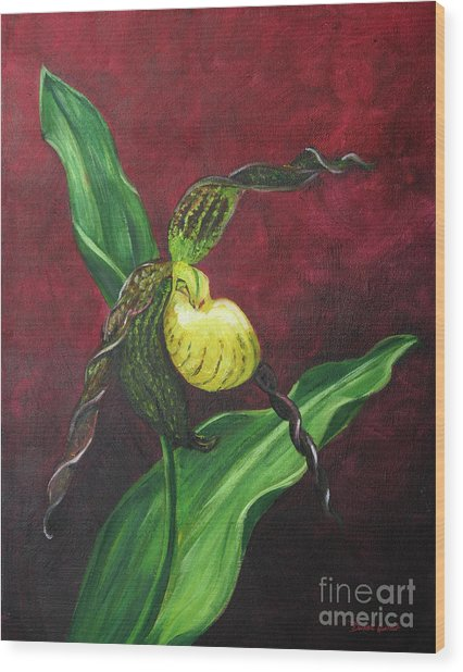 Lady Slipper Wood Print