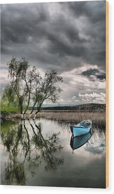 Lake - 1 Wood Print