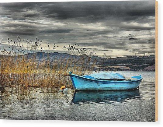 Lake - 4 Wood Print