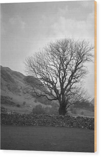 Lake District England Wood Print