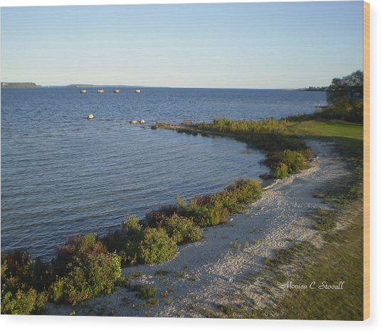 Lake Huron Shoreline Collection - St. Ignace Mi Wood Print