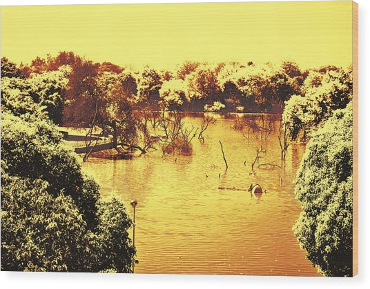 Lake In India Wood Print
