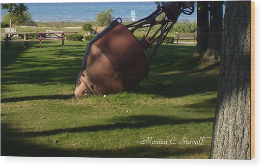 Lake Mi Park - Mackinaw City M Collectionsi   Wood Print