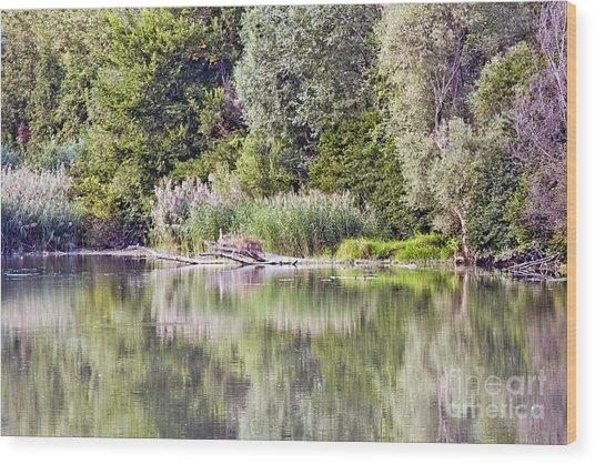 Lake Reflections Wood Print by Odon Czintos