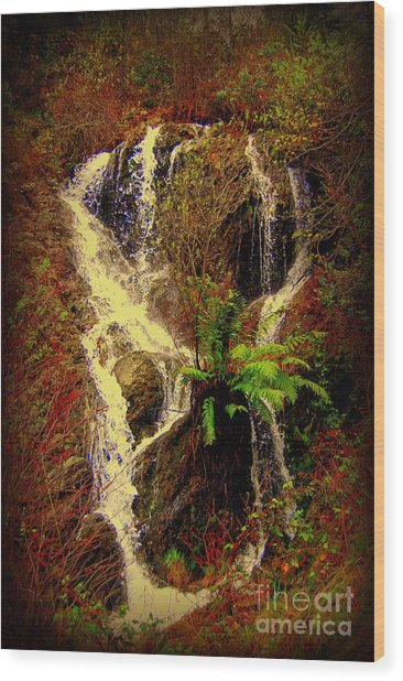 Lake Shasta Waterfall 3 Wood Print
