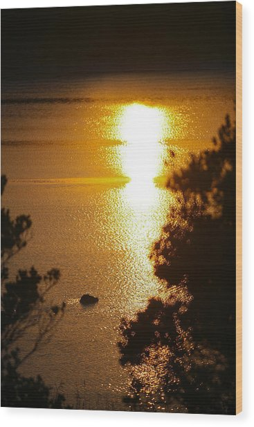 Lake Sunrise Wood Print by Miguel Capelo
