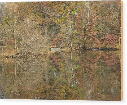 Lakeside Reflections Wood Print