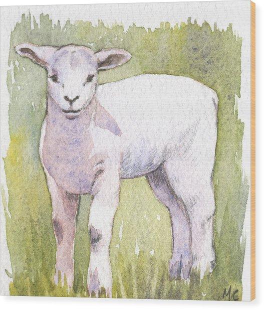 Lamb Wood Print by Maureen Carter