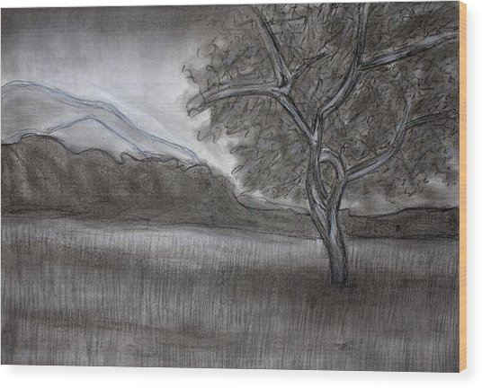lovely charcoal on wood art