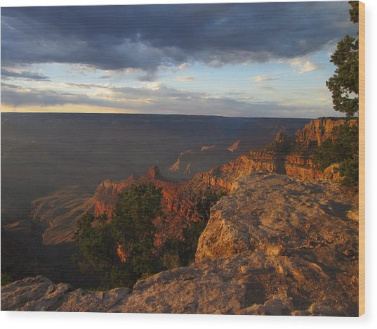Last Rays At Grand Canyon Wood Print by Pasha Sourbeer