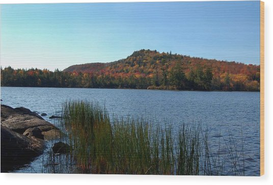 Late Fall On Lake Lila Wood Print