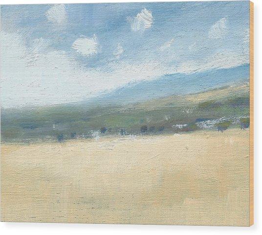 Late Summer Cornfields Wood Print by Alan Daysh