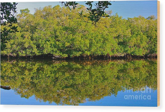 Lazy Reflections Wood Print
