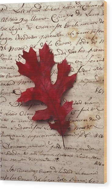 Leaf On Letter Wood Print