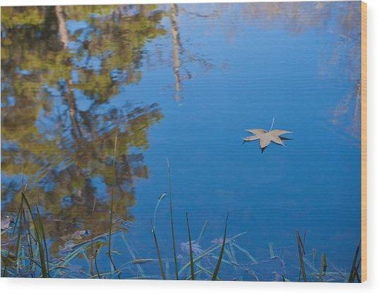 Leaf On Pond Wood Print