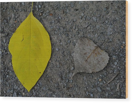 Leaf Yellow And Grey Wood Print
