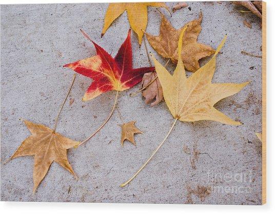 Leaves On The Sidewalk Wood Print