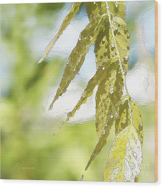 Leaves Touching Water Wood Print by Artist and Photographer Laura Wrede