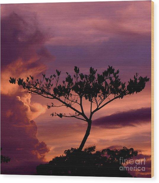Leeward Oahu Wood Print