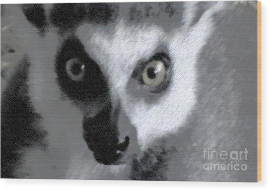 Lemur Wood Print by John From CNY