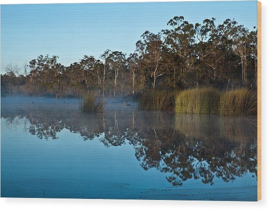 Lenthalls Dam 14 Wood Print by David Barringhaus