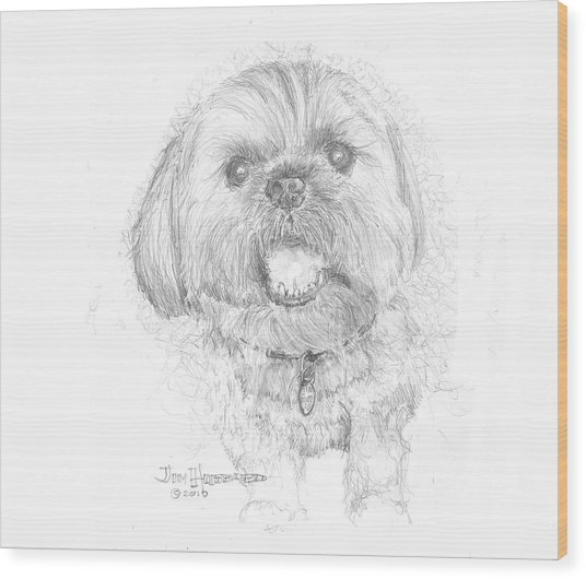 Lhasa Apso Wood Print by Jim Hubbard