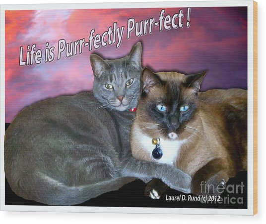 Life Is Purrfectly Purrfect Wood Print