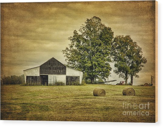 Life On The Farm Wood Print