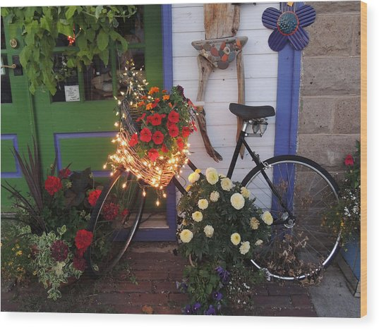 Lighted Bicycle Bayfield Wood Print by Peg Toliver