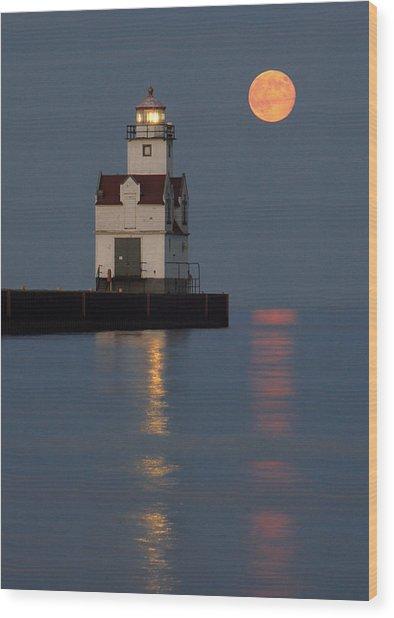 Lighthouse Companion Wood Print