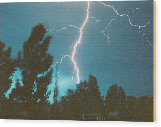 Lightning Tree Wood Print by Trent Mallett