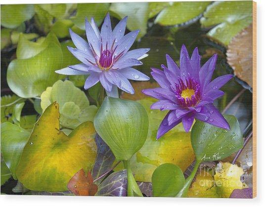 Lilies No. 2 Wood Print
