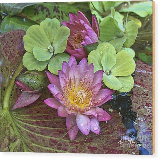 Lilies No. 21 Wood Print