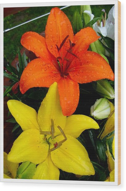 Lillies In Vermont Wood Print