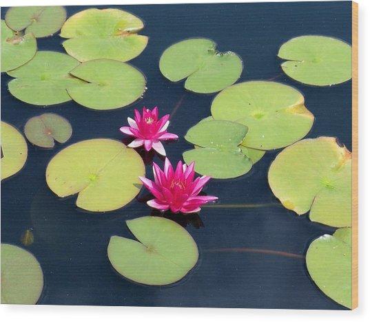 Lillies On Blue Wood Print