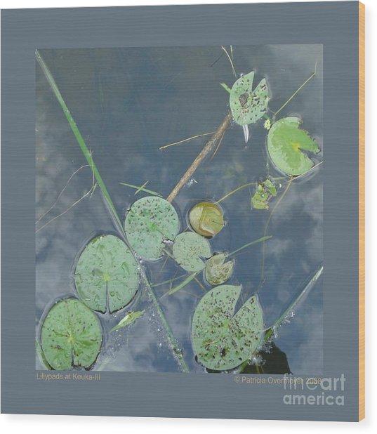 Lillypads At Keuka-iii Wood Print