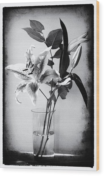 Lily 320bw Wood Print