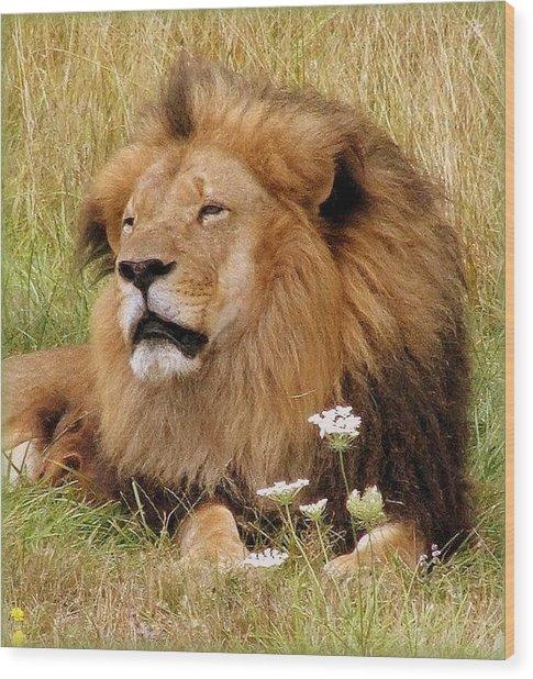Lion Bouquet Wood Print by Judy Garrett