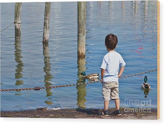 Little Boy By The Water Wood Print