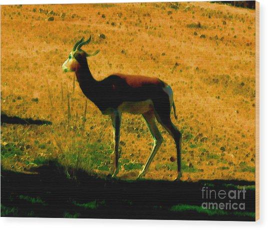 Little Deer Wood Print