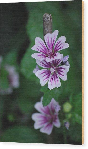 Little Purple Flowers Wood Print