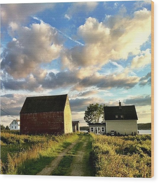 Little Tancook Island Farmhouse Wood Print